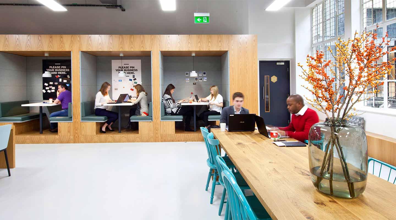 Cork Wall Ideas Offices