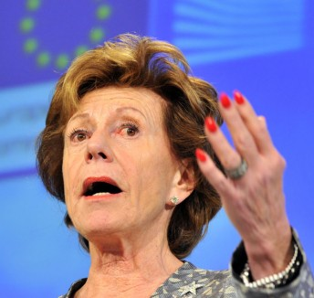 Crusading the EU's Digital Agenda: Neelie Kroes Comes to Spaces