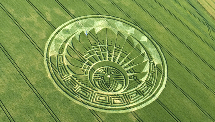 Crop Circle Exhibition_RO_web