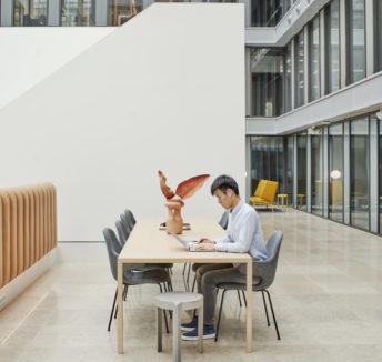 Le développement du travail indépendant