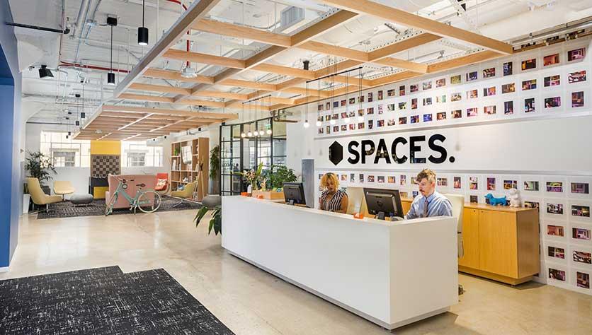 spaces team