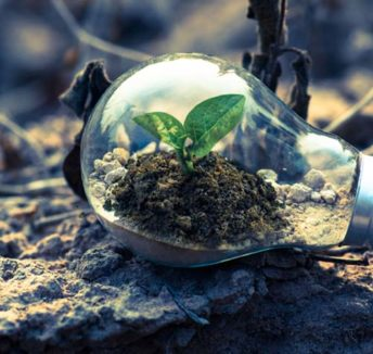 Earth Hour: How to make your business eco-friendly